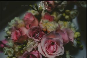 Di Martini | Oh My Photography - WordPress playa del carmen diseñador web