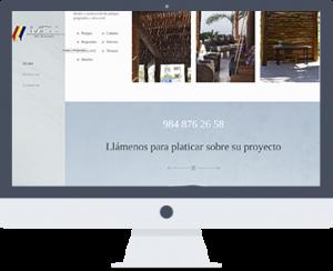 Desarrollo web playa del carmen programador