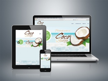 Paginas web playa del carmen - Cocobronze - CG Medios