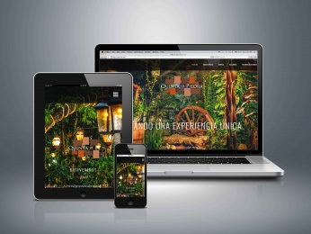 Diseño de paginas web en playa del carmen - CG Medios